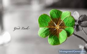 Luck Quotes Delectable Good Luck Messages And Quotes For Best Friends Messages And Quotes