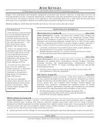 Professional Sales Resume Professional Sales Resume Template Resume Examples It Professional