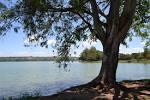 imagem de Lagoa+Santa+Minas+Gerais n-16