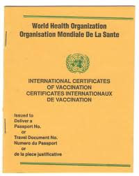 immunization card in india travelsafe clinic travel health yellow fever disease