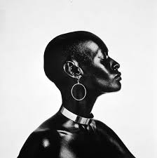 "posing beauty in african american culture colour fields  in his essay ""repetition and differentiation lorna simpson s iconography of the racial sublime "" okwui enwezor addressed the complicated relationship"