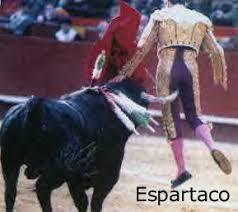 bull fighting injuries. Brilliant Fighting Spanish Matador Israel Lancho TorosBous A La Mar Toros Coleados  AntiToro Bloody Fiesta When Bulls Cry CORIA El Toro De Coria Coriau0027s Bullgored To Bull Fighting Injuries