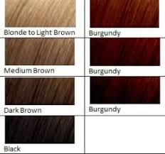 Burgundy Hair Dye Reddish Brown Hair Color Brown Hair