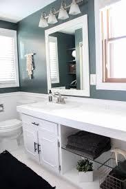 dark painted modern bathroom