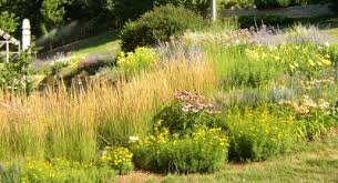 Small Picture Garden Design Garden Design with Butterfly and Hummingbird Garden