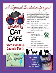 flyers orlando orlando cat cafe ground breaking flyer orlandocatcafe
