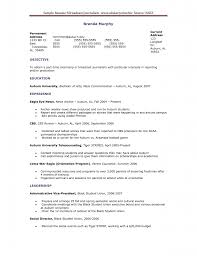 Freelance Writer Resume Sample Freelance Writer Resume Objective Resume Online Builder 86