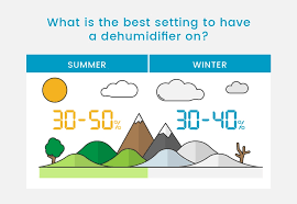 13 Step Guide To Buying A Dehumidifier In 2019 Probreeze