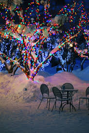 lighting outdoor trees. How To Wrap Lights Around Trees, Diy, To, Lighting, Outdoor Living Lighting Trees T