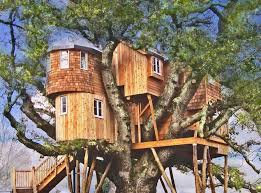 treehouse masters inside. How About Staying In These Spectacular Treehouses Tree Treehouse Masters Houses Inside