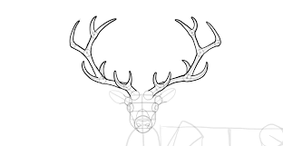 How To Draw A Deer Head Silhouette Step By Step