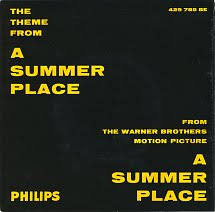 45cat percy faith and his orchestra the theme from a summer place go go po go philips sweden 429 785 be