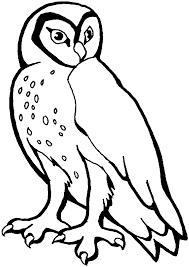 Coloring Snowy Owl Coloring Pages
