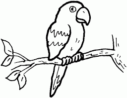rTjKGXxTR parrot outline coloring home on parrot outline template