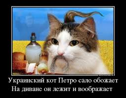 """""""Офицеру на международном саммите вместо обеда вот такую х#йню дают"""",  - российского полицейского, рассказавшего о скудном пайке, вынудили уволиться - Цензор.НЕТ 9133"""