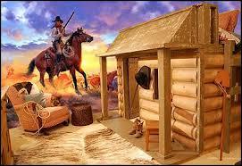 Cowboy Theme Bedrooms   Rustic Western Style Decorating Ideas   Rustic Decor    Cowboy Decor
