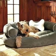 best couches for dogs best couches for dogs best furniture for pets best couches for dogs