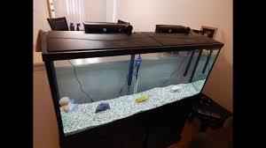 top fin essentials 55 gallon aquarium