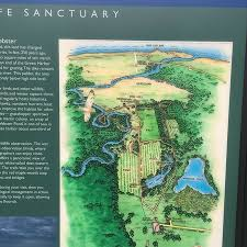 Photo0 Jpg Picture Of Daniel Webster Wildlife Sanctuary