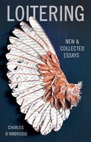 best essays of all time links rafal reyzer charles d ambrosio loitering new and collected essays