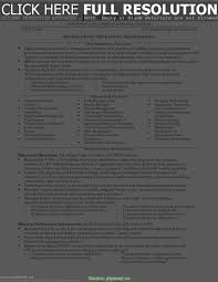 Useful It Manager Resume Bullets Science Resume Bullet Points