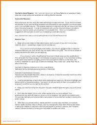 It Consultant Resume Sample Resume Consultant Resume Sample Professional Sap Basis