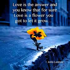Love Is The Answer Quote Classy Quote Of John Lennon QuoteSaga