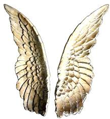 metal angel wings wall art angel wings wall art lovely decor excellent in large adorable next angel wings wall art gold large metal angel wings wall art