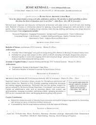 Information Technology Resume It Manager Of Director Sample