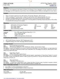 Format Of Resume For Fresher Engineers Pdf Resume Template Sample