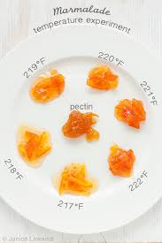 Pectin Content Of Fruits Chart Never Make Runny Marmalade Again With The Marmalade Setting