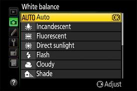 Understanding White Balance A Beginners Guide