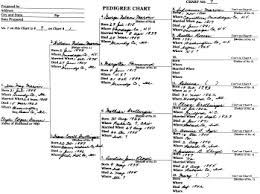 blank pedigree chart 4 generation family tree form familyeducation