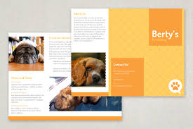 pet sitting brochure template featuring bright cheerful colors pet sitting brochure template featuring bright cheerful colors and an adorable paw print pattern