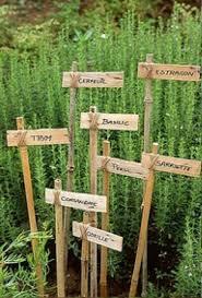 bamboo garden stakes. Wooden Bamboo Garden Stakes