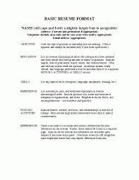 Importance Of A Resume Resume Volunteer Experience Sample