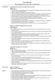 Capture Manager Sample Resume Campaign Marketing Manager Resume Samples Velvet Jobs 15