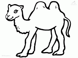Small Picture Desert Animals Coloring Pages Coloring Home