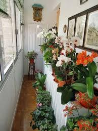 indoor apartment gardening. Fine Apartment Indoor Apartment Gardening With