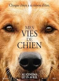 Mes vies de chien - Film (2017) - SensCritique