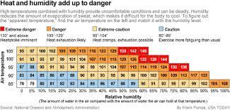 Heat Exhaustion Heat Stroke Chart Heat Safety Chart For Pets Heat Rash