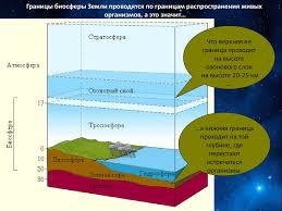 Биосфера Живая оболочка земли презентация онлайн Границы биосферы Земли проводятся по границам распространения живых организмов а это значит Что верхняя ее граница проходит на высоте озонового слоя