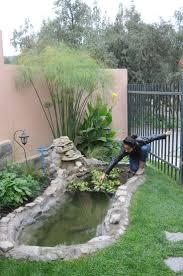 Mantenimiento de plantas acuticas en fuente de agua