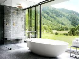 cute bathtub handles for elderly ideas bathtub design ideas