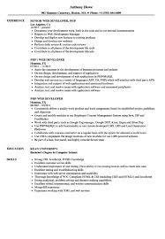Bistrun : Latex Templates Resume Resume Latex Template Reference ...