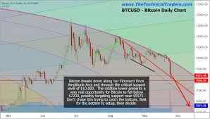 Bitcoin Price Collapse Continue For Many Months Kitco News