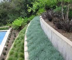 growing a garden on a hill part 1