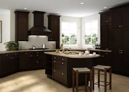 Dark Kitchen Cabinets Impressive Ready To Assemble Kitchen Cabinets Kitchen Cabinets