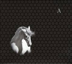 """CD <b>Аквариум</b> """"<b>Лошадь белая</b>"""" — CD — Рок-магазин атрибутики ..."""
