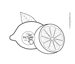 Small Picture Drawing Lemon Coloring Page 69 For Free Online with Lemon Coloring